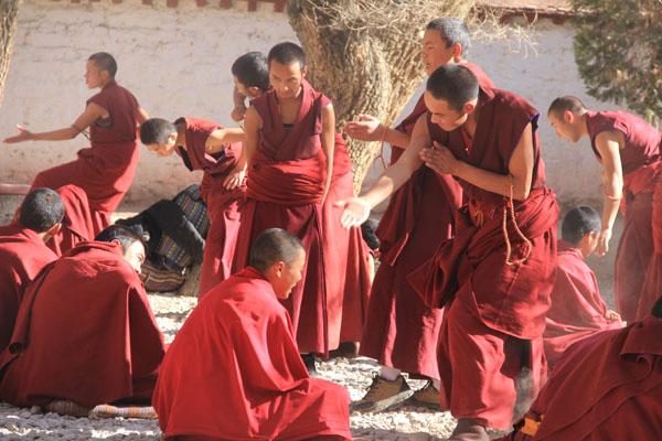 Sera Monastery Debate