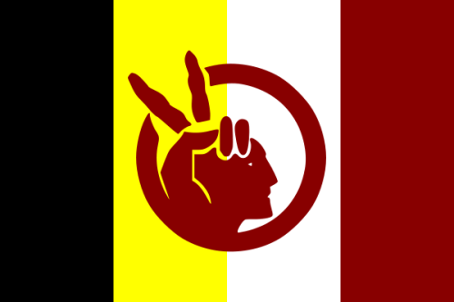 Flag_of_the_American_Indian_Movement