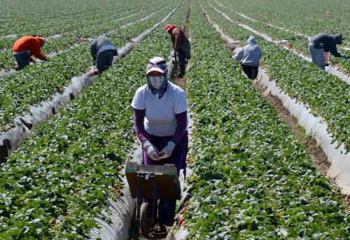 Migrant farmworkers Oxnard