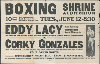 Corky as boxer