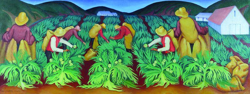 Artichoke pickers 2