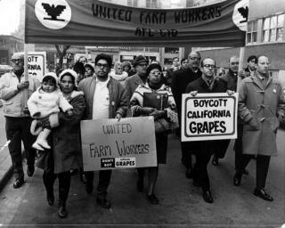 Delano Grape Strike supporters Toronto
