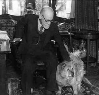 Freud and dog